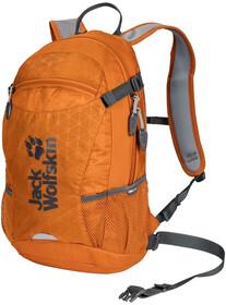 Jack Wolfskin FAST TRACK Daypack aquamarine 14 L: